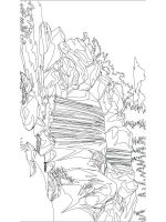 nature-coloring-pages-for-adults-6