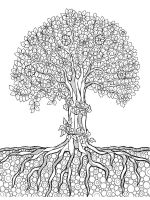 zentangle-oak-coloring-pages-4