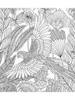 zentangle-parrot-coloring-pages-10