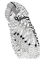 zentangle-parrot-coloring-pages-12