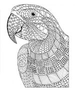 zentangle-parrot-coloring-pages-16