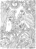 zentangle-parrot-coloring-pages-7