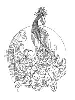 zentangle-peacock-coloring-pages-10