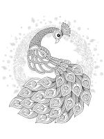 zentangle-peacock-coloring-pages-14