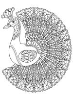 zentangle-peacock-coloring-pages-4