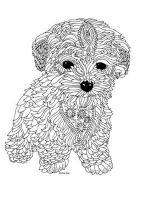 zentangle-puppy-coloring-pages-2