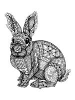 zentangle-rabbit-coloring-pages-11