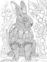 zentangle-rabbit-coloring-pages-13