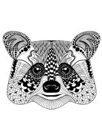 zentangle-raccoon-coloring-pages-11