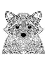 zentangle-raccoon-coloring-pages-3