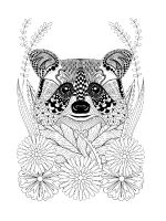 zentangle-raccoon-coloring-pages-4