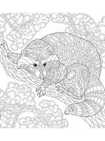 zentangle-raccoon-coloring-pages-7
