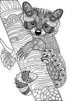 zentangle-raccoon-coloring-pages-8