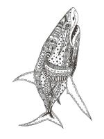 zentangle-shark-coloring-pages-1