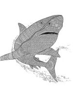 zentangle-shark-coloring-pages-2