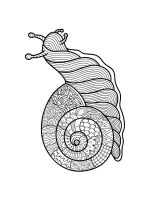 zentangle-snail-coloring-pages-10