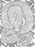 zentangle-snake-coloring-pages-12