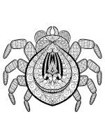 zentangle-spider-coloring-pages-1