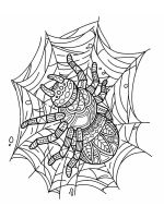 zentangle-spider-coloring-pages-3