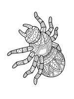 zentangle-spider-coloring-pages-6