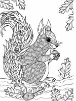 zentangle-squirrel-coloring-pages-12