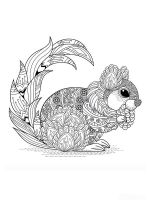 zentangle-squirrel-coloring-pages-4