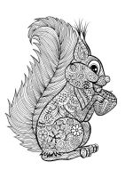 zentangle-squirrel-coloring-pages-7