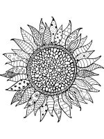 zentangle-sunflower-coloring-pages-5