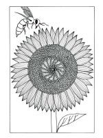 zentangle-sunflower-coloring-pages-6