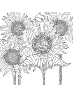 zentangle-sunflower-coloring-pages-7