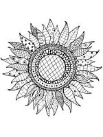 zentangle-sunflower-coloring-pages-8