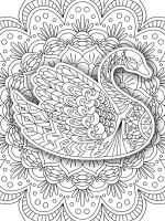 zentangle-swan-coloring-pages-1