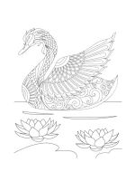 zentangle-swan-coloring-pages-3