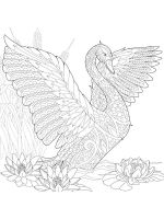 zentangle-swan-coloring-pages-5
