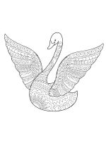 zentangle-swan-coloring-pages-7