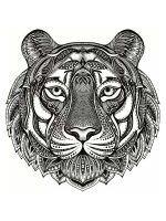 zentangle-tiger-coloring-pages-2