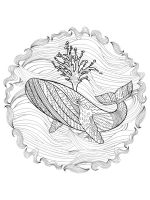 zentangle-whale-coloring-pages-12