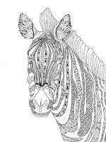 zentangle-zebra-coloring-pages-1