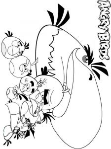 Angry-Birds-coloring-pages-9