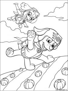 paw-patrol-coloring-pages-14