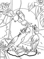 rio-and-rio2-coloring-pages-39