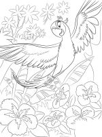 rio-and-rio2-coloring-pages-42
