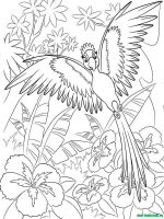 rio-and-rio2-coloring-pages-8
