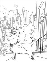 the-secret-life-of-pets-coloring-pages-17