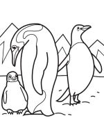 Antarctica-coloring-pages-3