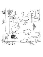 Australia-coloring-pages-13