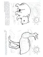 Australia-coloring-pages-15