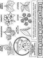 educational-mother-nature-safety-coloring-pages-8