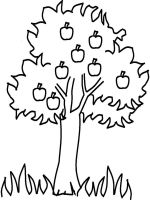 Apple-fruits-coloring-pages-11