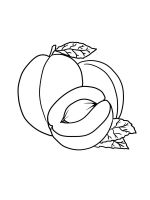 Apricot-coloring-pages-12